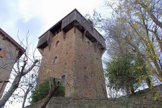 31-torre