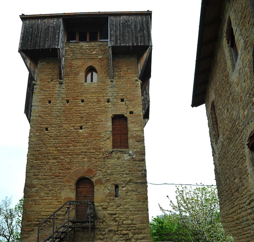 torre pino