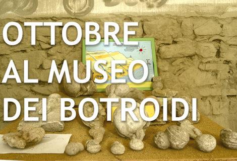 Due appuntamenti al Museo dei Botroidi